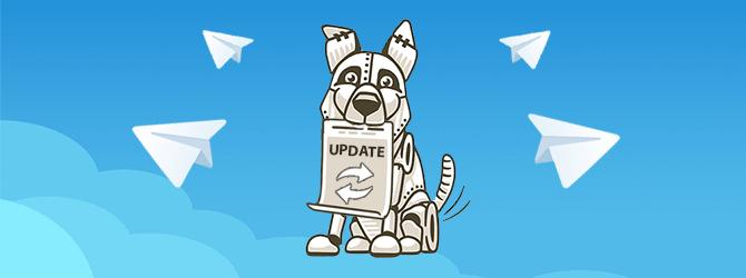 Как обновить Telegram и зачем это нужно?