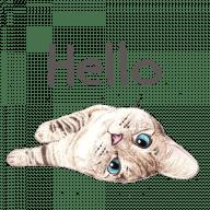 Набор стикеров «Nala & White Coffee Cat»